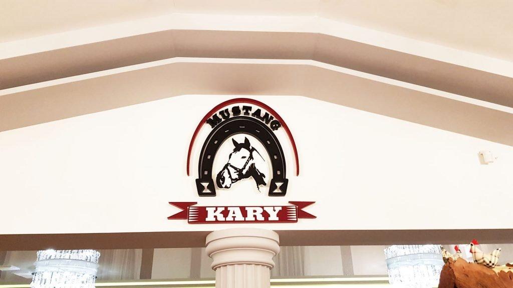 kary 3d