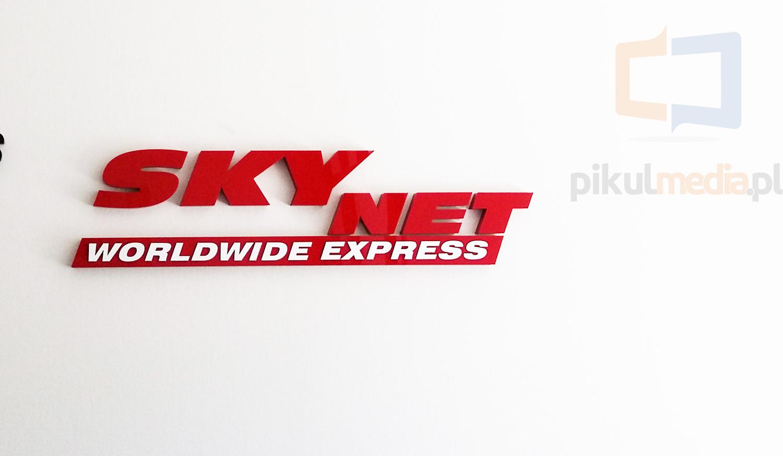 sky net logo 3d