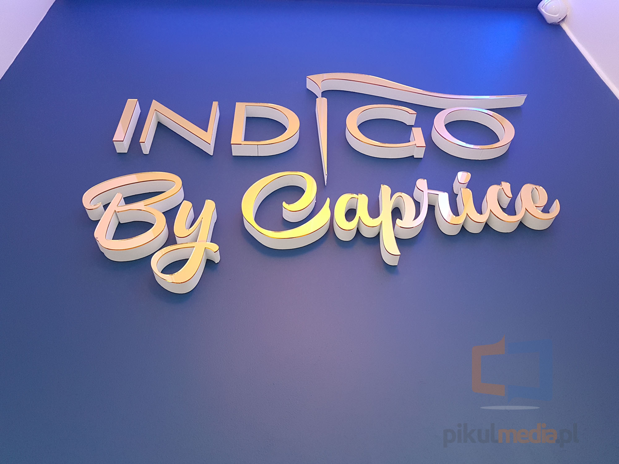 indigo - golden 3d logo